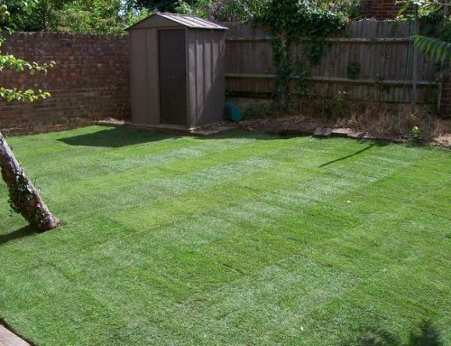 Garden Clearance and Turfing in Enfield