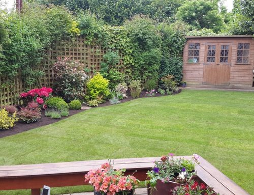Garden Makeover and Soft Landscaping in Southgate