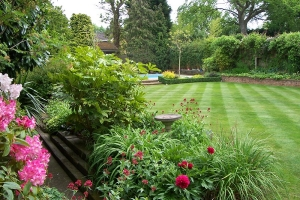 gardeners south hertfordshire and north london