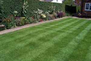 gardeners whetstone